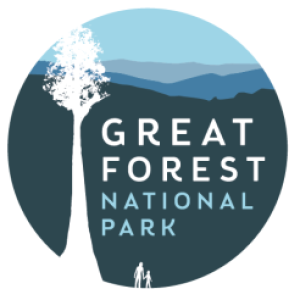 great forest
