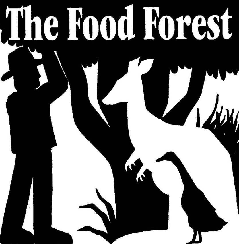 food forest logo square