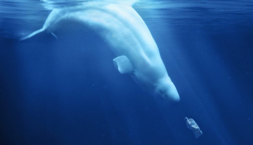 A Plastic Ocean image 1400x787 1