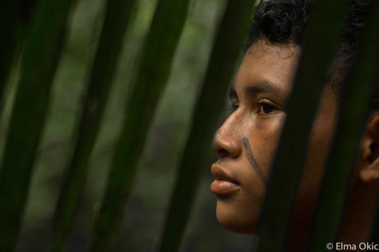 Amazonia Dammed