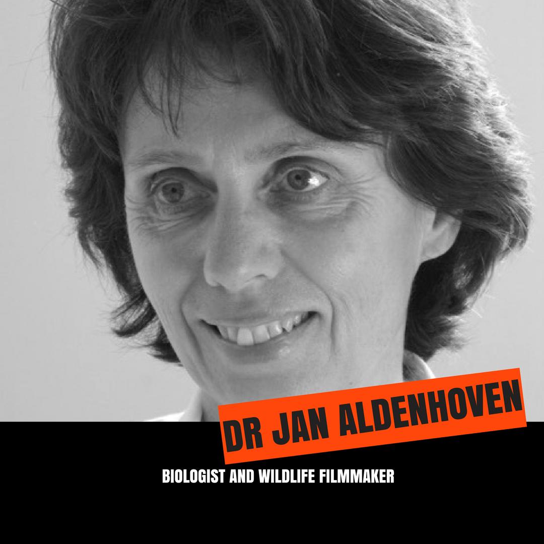 JAN ALDENHOVEN - Copy