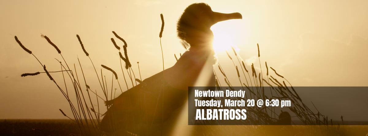 Slider Sydney Albatross 1350x500px