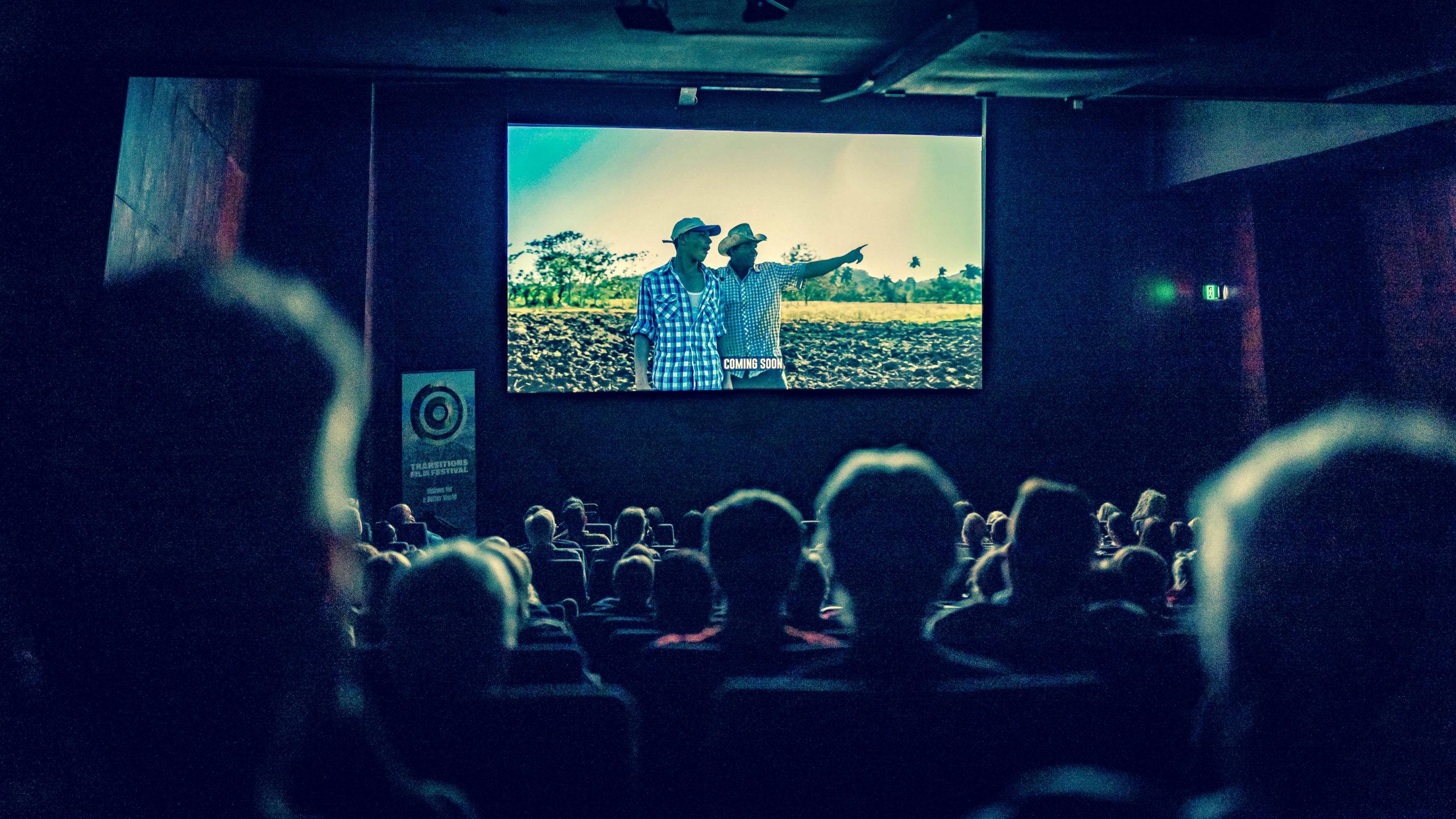 Transitions Film Fest - Serengeti Rules [MaxFilm]-33