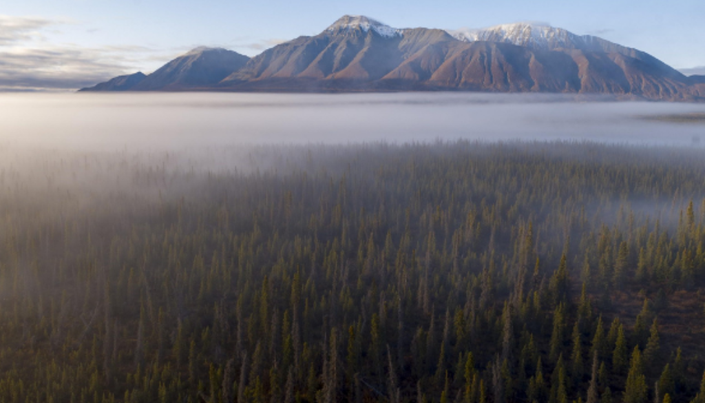 Borealis_An-aerial-view-of-the-boreal-forest-surrounding-mountains-in-the-Yukon-Territory