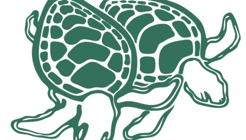 ECNT logo turtles